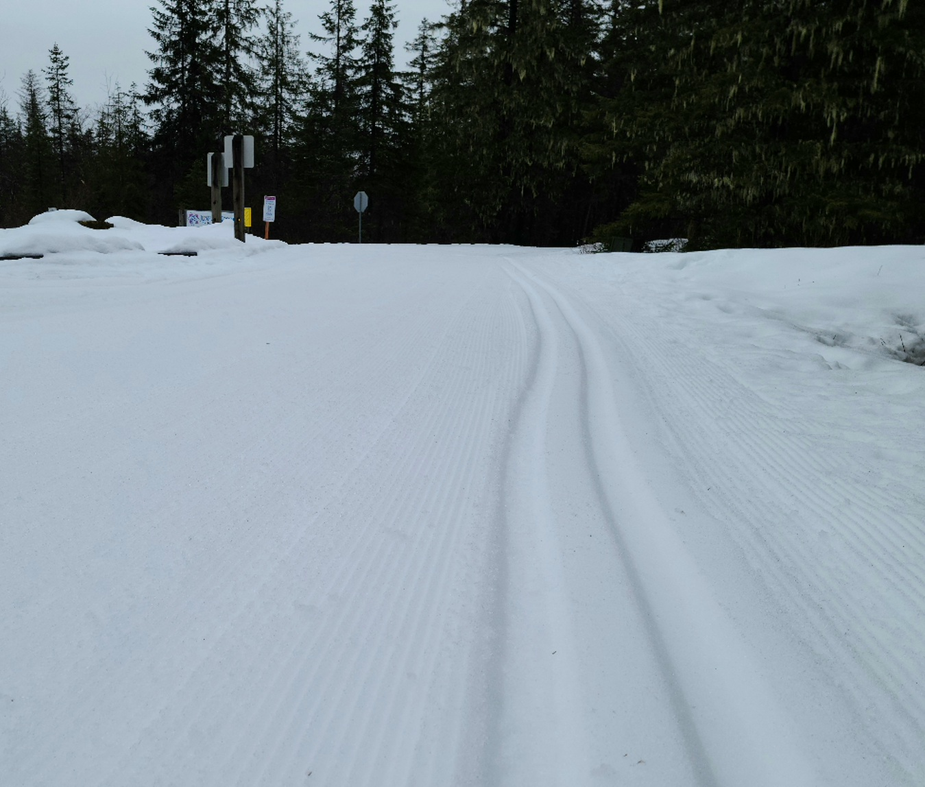 Campground – Thursday groomed